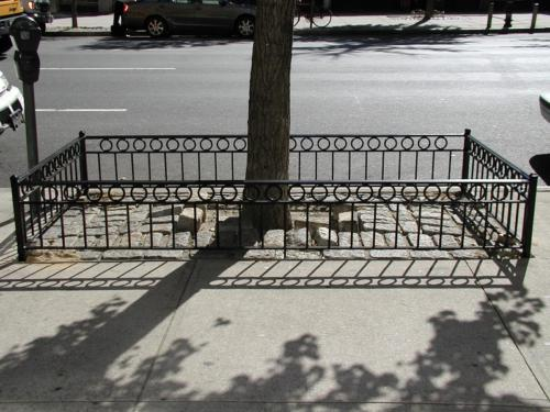 MANHATTAN STYLE TREE PIT GUARDS PITS GUARD STEEL